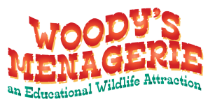 Woody's Menagerie